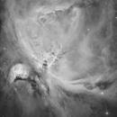 Orion in Hydrogen Alpha,                                Lee Borsboom