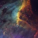 Pelican Nebula Narrowband (SHO) ,                                Salvatore Giambruno