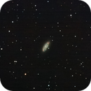 NGC2976,                                Jukka Piira