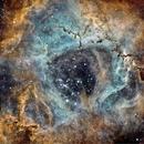 Rosette Nebula - NGC 2237 and other,                                Stephan Reinhold