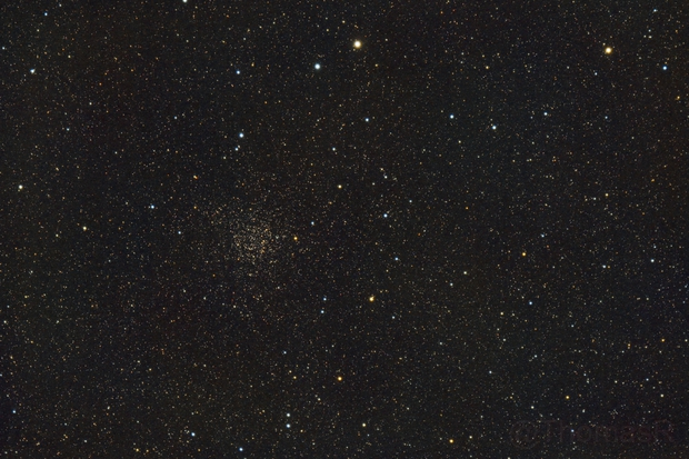 NGC 7789: Caroline's Rose,                                ThomasR