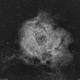 NGC2237 Rosette nebula Ha.,                                lukfer