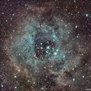 NGC 2244,                                Jorge Guerrero Pérez