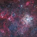 NGC 2070, The Tarantula Nebula (T33),                                Ruben Barbosa