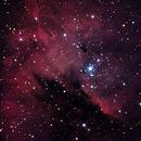 Center of the Pacman Nebula,                                  HUGO S GARNICA