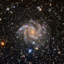 NGC 6946,                                Colin McGill