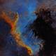 Cygnus Wall,                                ebomber