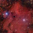 IC 5070 - Pellican Nebula,                                GALASSIA 60