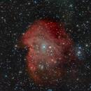 NGC 2174 Nebulosa cabeza de mono,                                Andrés Ruiz de Va...