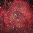 NGC 2237 Rosetta,                                Carlo Rocchi