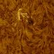 Sunspot AR2741, HighRes, HA, 05-15-2019,                                Martin (Marty) Wise
