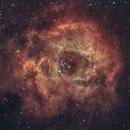 Rosette Nebula,                                Roman_A-S