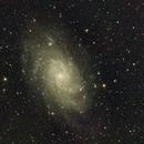 M33  Triangulum Galaxy,                                Ray Heinle