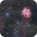 Rosette and Cone Nebulae,                                SirSocket