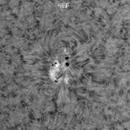 Sunspot AR2734, HA, 03-06-2019,                                Martin (Marty) Wise