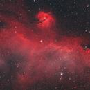 IC2177 The Seagull Nebula,                                Nick LaPlaca