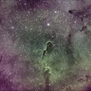 Elephant's Trunk IC1396 SHO,                                  Pam Whitfield