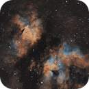 IC1318 - The Butterfly nebula in Cyg (SHO),                                Benny Colyn