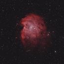 NGC 2174 Monkey Head Nebula,                                Arvid Emtegren