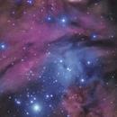 NGC2264 - Cone, Fox fur Nebulas and Christmas Tree Cluster,                                Michel Lakos M.