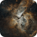 NGC 3372 Narrowband,                                mwil298