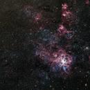 NGC2070 - Tarantula Nebula in LRGB,                                Richard Bratt