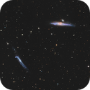 Whale and Hockey Stick Galaxies,                                Phil Brewer