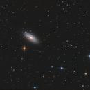 NGC 2841  T 250 f/4  /  ATIK ONE  /  AZEQ6,                    Pulsar59