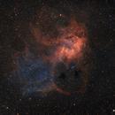 SH2 132 Lion Nebula,                                Fritz