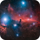 The Horsehead Nebula - IC 434 by Insight Observatory!,                                Daniel Nobre