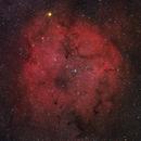 IC 1396,                                Sergey Trudolyubov