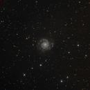 M74,                                CAMMILLERI JEAN OLIVIER