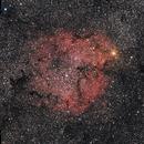 IC 1396 (Elephant's Trunk Nebula),                                pade