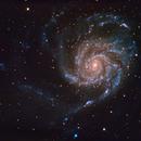 M101,                                Peter Cox