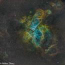 Eta Carinae nebula (9 minute Fast Food, NGC 3372; SHO) ,                                Miles Zhou