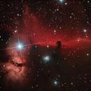 Horsehead and Flame Nebulas,                                Samuel Müller
