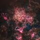 Tarantula Nebula - NGC 2070 (starless),                                Delberson