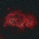 The Soul Nebula, IC1848, looks like a small Buffalo!,                                Doversole83