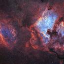 Flames of Cygnus: Sh2-119 to Pelican,                                Konstantin Firsov