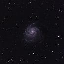 M101 Pinwheel Galaxy,                                Mike Lethbridge