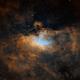 The Eagle Nebula,                                Dick Newell