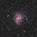 NGC6946 LRGB,                                Christopher Gomez
