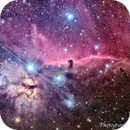 "Horse Head Nebula ""B33"" and The Flame Nebula ""NGC 2024"",                                Neil Viljoen"