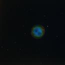 Owl Nebula in Hubble Palette,                                chuckp