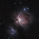 M42 - Orion Nebula,                                Chief