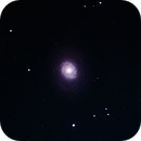 Messier 94,                                Paul Hutchinson