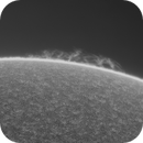 Hedgerow Solar Animation 4_15_20,                                Alan