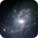 M33 Triangulum Galaxy,                                Andrew Gray