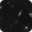 Hickson 44 Galaxy Group,                                Hap Griffin