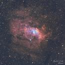 NGC7635 Bubble Nebula SHO,                                Michael Caller